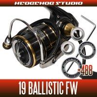 19バリスティックFW LT1000S-P, LT2000SS-XH, LT2500S-C, LT2500S-CXH用 MAX11BB フルベアリングチューニングキット