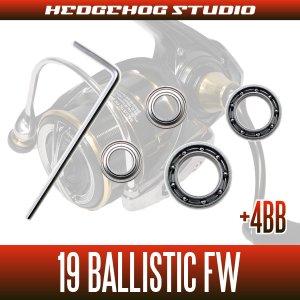 画像2: 19バリスティックFW LT1000S-P, LT2000SS-XH, LT2500S-C, LT2500S-CXH用 MAX11BB フルベアリングチューニングキット