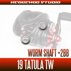 画像2: 【ダイワ】19タトゥーラ TW用 ウォームシャフトベアリング(+2BB)