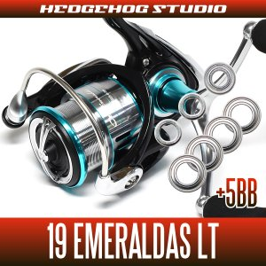 画像1: 19エメラルダスLT 2500S-DH, 2500S-H-DH, 3000S-C-DH, 3000S-CH-DH用 MAX12BB フルベアリングチューニングキット(19EMERALDAS・エギング・イカ)