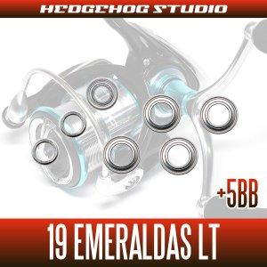 画像2: 19エメラルダスLT 2500S-DH, 2500S-H-DH, 3000S-C-DH, 3000S-CH-DH用 MAX12BB フルベアリングチューニングキット(19EMERALDAS・エギング・イカ)