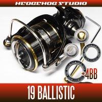 19バリスティック LT2000SS-P, LT2500SS-CXH, LT2500S-XH, LT3000S-CXH, LT3000, LT3000-XH, LT4000-C, LT4000-CXH用 MAX11BB フルベアリングチューニングキット