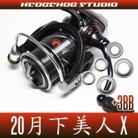 20月下美人X LT1000S-P, LT2000S-P, LT2000S用 MAX8BB フルベアリングチューニングキット(ソルト,アジング)