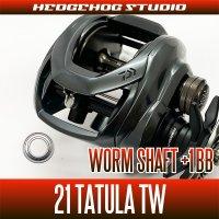 【ダイワ】21タトゥーラ TW 300, 400用 ウォームシャフトベアリングチューニングキット(+1BB)