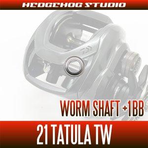 画像2: 【ダイワ】21タトゥーラ TW 300, 400用 ウォームシャフトベアリングチューニングキット(+1BB)