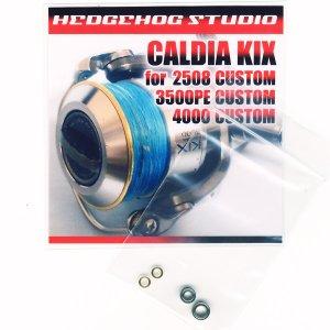 画像1: カルディアKIX 3500PE カスタム用 MAX8BB フルベアリングチューニングキット