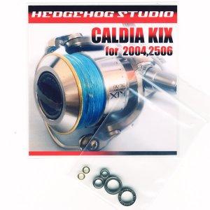 画像1: カルディアKIX 2004用 MAX9BB フルベアリングチューニングキット