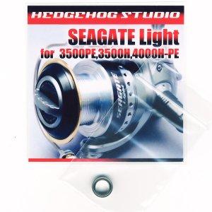 画像1: シーゲートライト 4000H-PE用 MAX8BB フルベアリングチューニングキット
